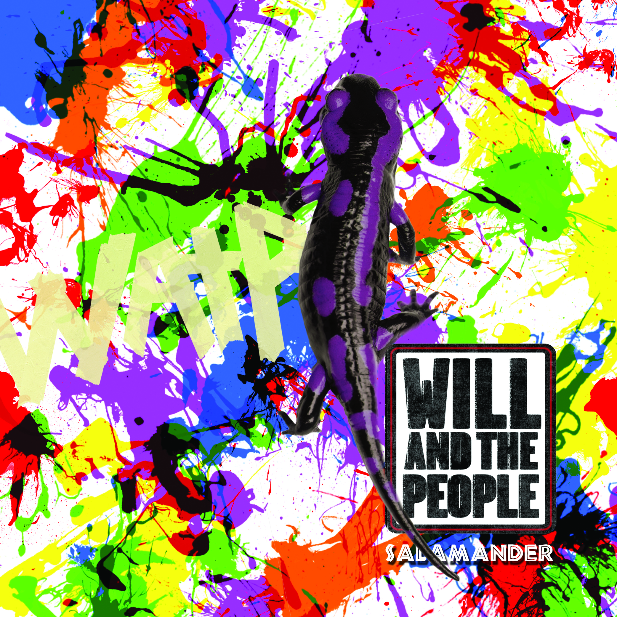 Salamander Video - Will and The People