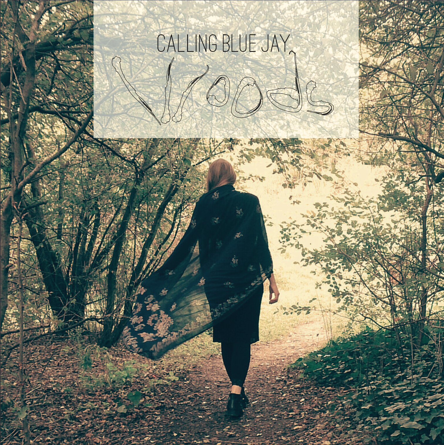 Calling Blue Jay - Woods (Digital Download) - Calling Blue Jay
